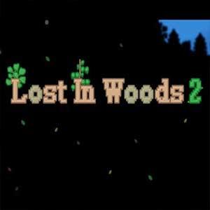 Acheter Lost in Woods 2 Clé Cd Comparateur Prix