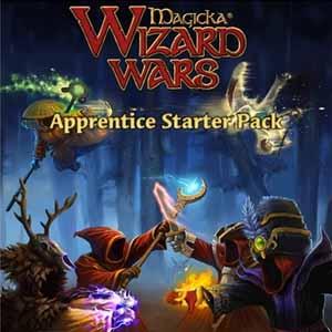 Acheter Magicka Wizard Wars Apprentice Starter Pack Clé Cd Comparateur Prix