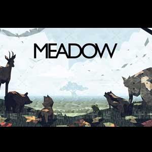 Acheter Meadow Clé Cd Comparateur Prix