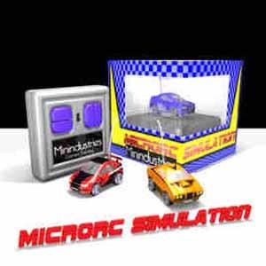 MicroRC Simulation