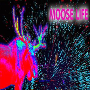 Moose Life