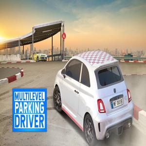 Multilevel Parking Driver