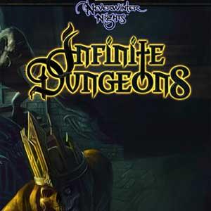 Acheter Neverwinter Nights Infinite Dungeons Clé CD Comparateur Prix