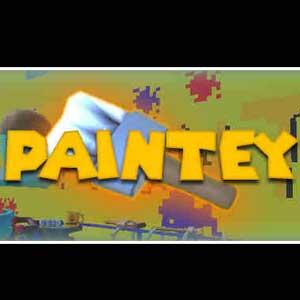 Acheter Paintey Clé Cd Comparateur Prix