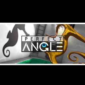 Acheter Perfect Angle Clé Cd Comparateur Prix