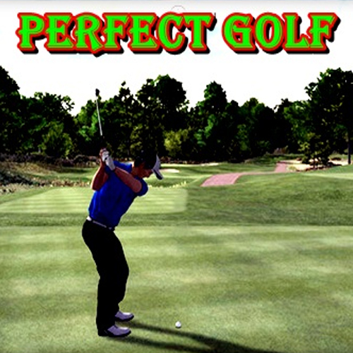 Acheter Perfect Golf Clé Cd Comparateur Prix