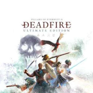 Acheter Pillars of Eternity 2 Deadfire Xbox Series Comparateur Prix