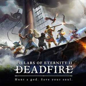 Pillars of Eternity 2 Deadfire Critical Role