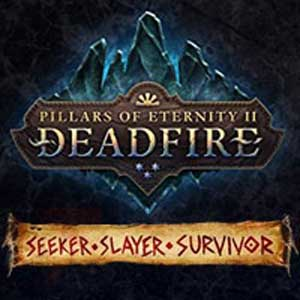 Pillars of Eternity 2 Deadfire Seeker, Slayer, Survivor