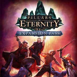 Acheter Pillars of Eternity Expansion Pass Clé Cd Comparateur Prix