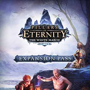 Acheter Pillars of Eternity The White March Expansion Pass Clé Cd Comparateur Prix