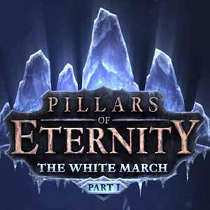 Acheter Pillars of Eternity The White March Part 1 Clé Cd Comparateur Prix