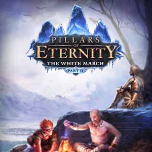 Acheter Pillars of Eternity The White March Part Two Clé Cd Comparateur Prix
