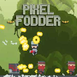 Acheter Pixel Fodder Clé Cd Comparateur Prix