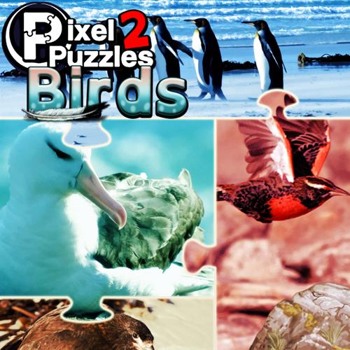 Acheter Pixel Puzzles 2 Birds Clé Cd Comparateur Prix