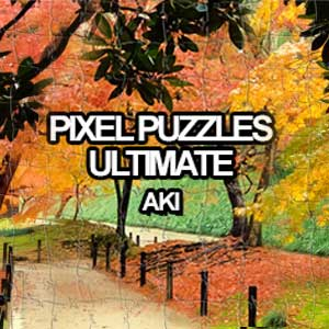 Pixel Puzzles Ultimate Puzzle Pack Aki