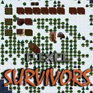 Acheter Pixel Survivors Clé Cd Comparateur Prix