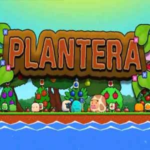 Acheter Plantera Clé Cd Comparateur Prix