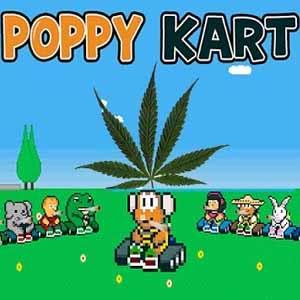 Acheter Poppy Kart Clé Cd Comparateur Prix