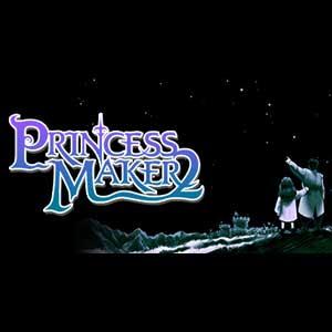 Acheter Princess Maker 2 Refine Clé Cd Comparateur Prix