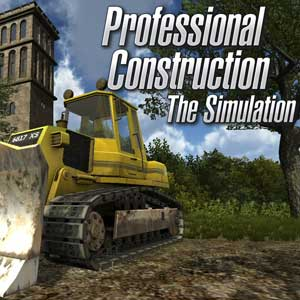 Acheter Professional Construction The Simulation Clé Cd Comparateur Prix