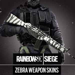 Rainbow Six Siege Zebra Weapon Skin