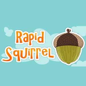 Acheter Rapid Squirrel Clé Cd Comparateur Prix