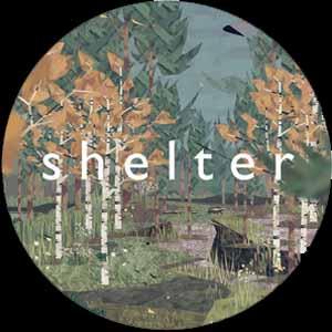 Acheter Shelter Clé Cd Comparateur Prix