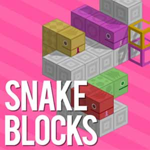 Acheter Snake Blocks Clé Cd Comparateur Prix
