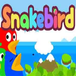 Acheter Snakebird Clé Cd Comparateur Prix