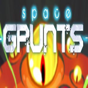 Acheter Space Grunts Nintendo Switch comparateur prix