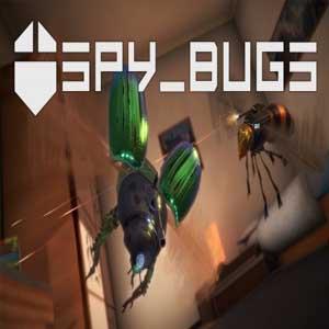 Acheter Spy Bugs Clé Cd Comparateur Prix