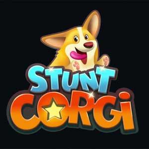 Stunt Corgi VR
