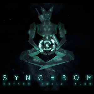 Acheter Synchrom Clé Cd Comparateur Prix