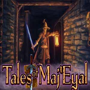 Acheter Tales of Maj Eyal Clé Cd Comparateur Prix