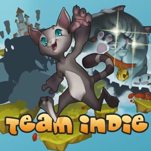 Acheter Team Indie Clé Cd Comparateur Prix