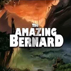 Acheter The Amazing Bernard Clé CD Comparateur Prix