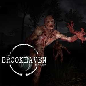 Acheter The Brookhaven Experiment Clé Cd Comparateur Prix