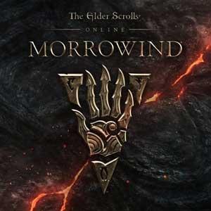 Telecharger The Elder Scrolls Online Morrowind PS4 code Comparateur Prix