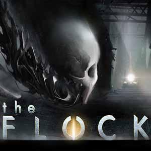 Acheter The Flock Clé Cd Comparateur Prix