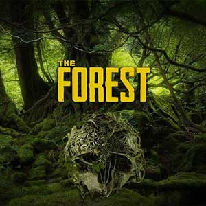 Acheter The Forest PS4 Comparateur Prix