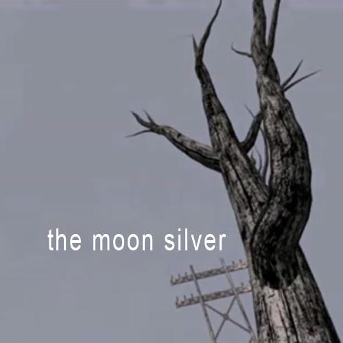Acheter The Moon Silver Clé Cd Comparateur Prix