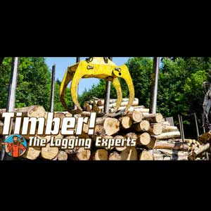 Acheter Timber The Logging Experts Clé Cd Comparateur Prix