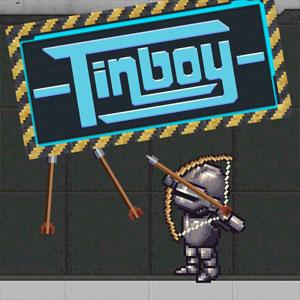 Acheter Tinboy Nintendo 3DS Comparateur Prix