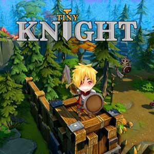 Acheter Tiny Knight Clé Cd Comparateur Prix