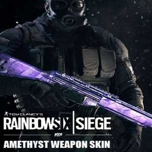 Tom Clancys Rainbow Six Siege Amethyst