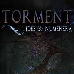 Acheter Torment Tides of Numenera Clé Cd Comparateur Prix