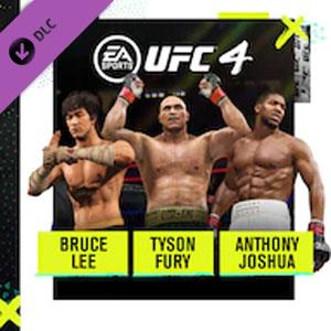 UFC 4 Fighter Bundle
