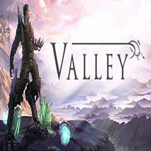 Acheter Valley Clé Cd Comparateur Prix