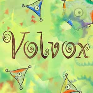 Acheter Volvox Clé Cd Comparateur Prix